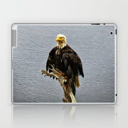 Eagle Drip Dry Laptop & iPad Skin