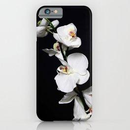 Simplicity in Nature iPhone Case