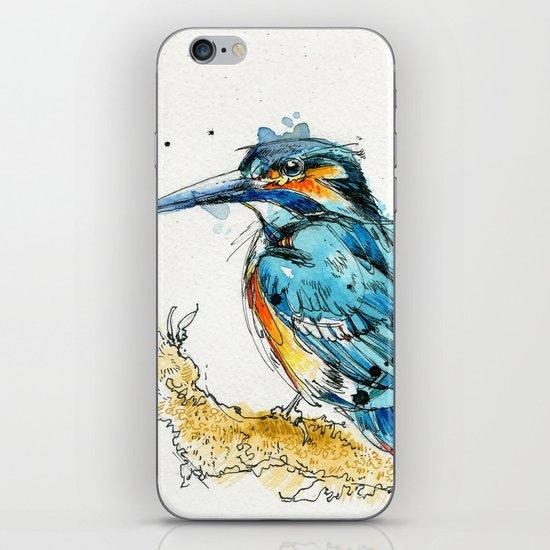 Regal Kingfisher iPhone & iPod Skin