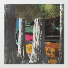 watcher in the woods Canvas Print