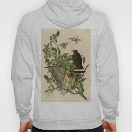 91 Broad winged Hawk Hoody