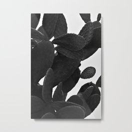 Cactus in Black And White Metal Print