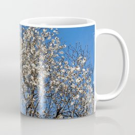 May flowering tree Coffee Mug
