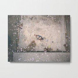 dead birds Metal Print