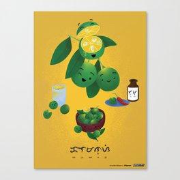 Calamansi Canvas Print