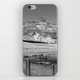 Deadsea view iPhone Skin