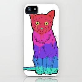 Graffiti Cat iPhone Case