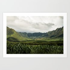Waianae Valley Art Print