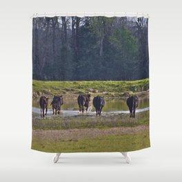 Cattle Shower Curtain