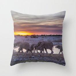 Elephant Herd at Okaukuejo Waterhole at Sunset Throw Pillow