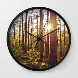 Evening in the forest Wall Clock