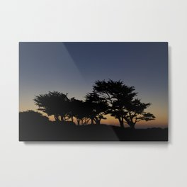Monterey night sky Metal Print
