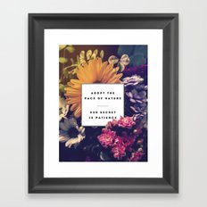 The Pace Of Nature Framed Art Print