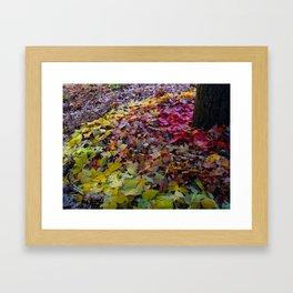 Install 3-4 Framed Art Print