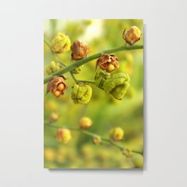 Foliage background Metal Print
