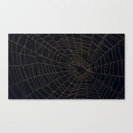 Real Spider Web Canvas Print