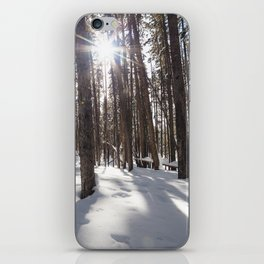 Yellowstone National Park - Lodgepole Forest 2 iPhone Skin