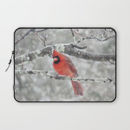 Color My Winter Laptop Sleeve