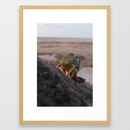 Basalt Layer Lumpback Framed Art Print