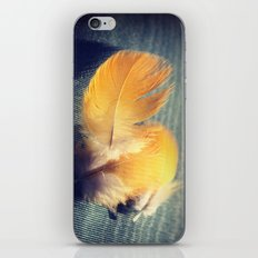 Feather Sun iPhone & iPod Skin