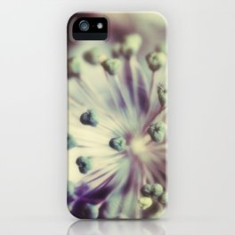 time's irreverent passing iPhone Case