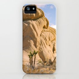 Rocks and Yuccas iPhone Case