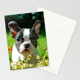 French bulldog puppy behind the foliage Stationery Cards