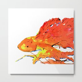 Orange Betta Fish Metal Print