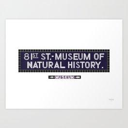 81st Street, Museum of Natural History Art Print