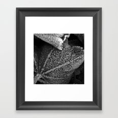 frosty time II Framed Art Print