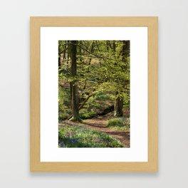 Down to the Stream Framed Art Print