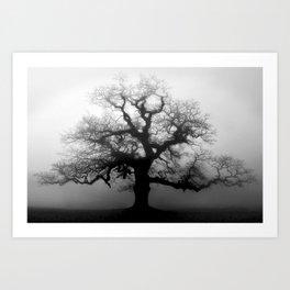 Naked Granddaddy Tree Art Print