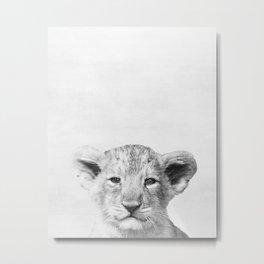 Baby lion Peekaboo print Metal Print
