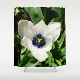 Blue Centered Tulip Shower Curtain