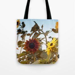 Red Sunflower... Tote Bag