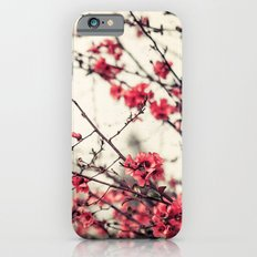 Printemps Rose Slim Case iPhone 6s