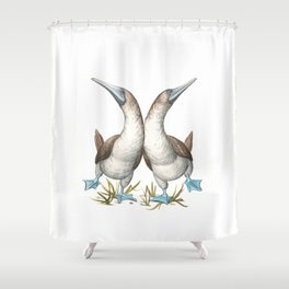 Blue-footed Booby (Sula nebouxii) Shower Curtain