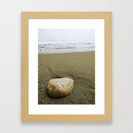 Pebbles on the Beach No.5 Framed Art Print