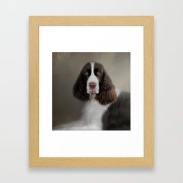 Waiting Patiently - English Springer Spaniel Framed Art Print