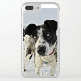Blue Eyed Pup Clear iPhone Case