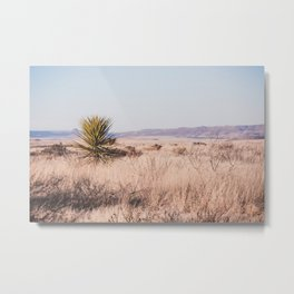 West Texas Vista Metal Print