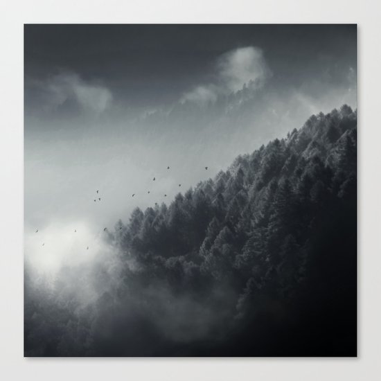 Misty Woodlands Canvas Print