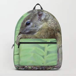 A squirrels feast Backpack