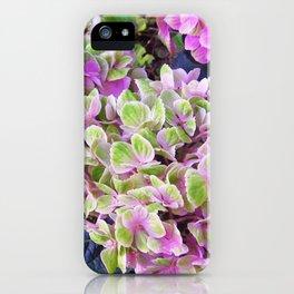 Pink & Green Hydrangea iPhone Case