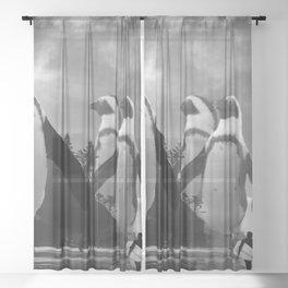 Walk of the Penguins Sheer Curtain
