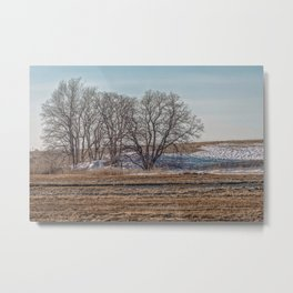Winter Marsh Landscape Metal Print
