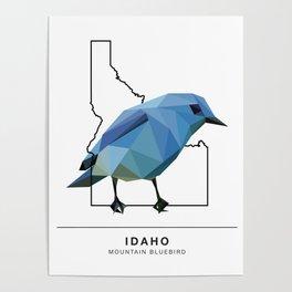 Idaho – Mountain Bluebird Poster