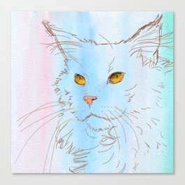 Magnificent Maine Coon Canvas Print