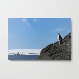 Lonely at the Top Metal Print