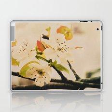 Spring Botanical -- Pear Tree in Flower Laptop & iPad Skin